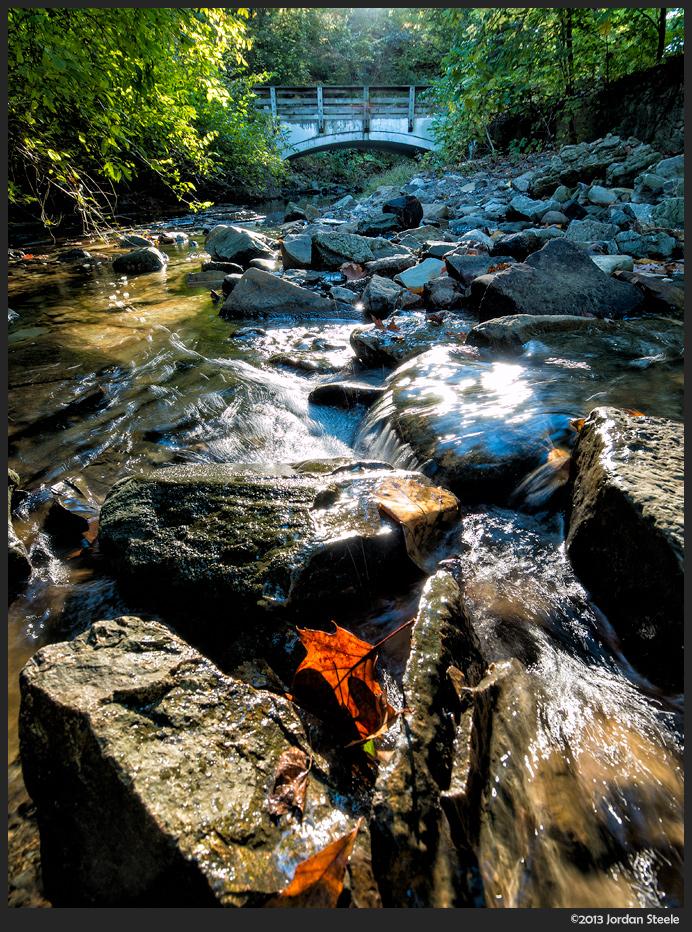 Leaf in the Stream - Panasonic GX7 with Olympus 9-18mm f/4-5.6