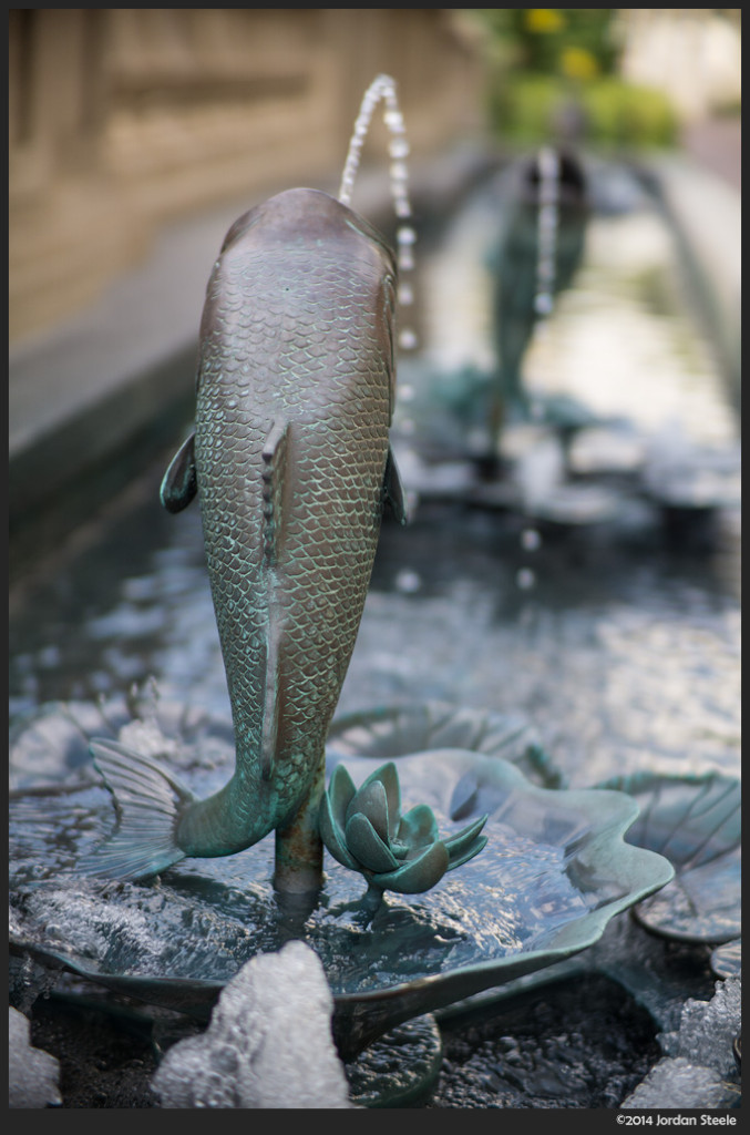 Fish Fountain - Sony a6000 with Ibelux 40mm f/0.85 @ f/1.4
