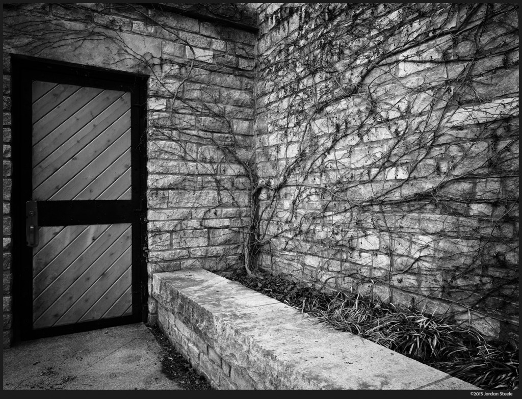 Vines and Door - Olympus OM-D E-M5 Mark II  - 40MP High-Res Mode