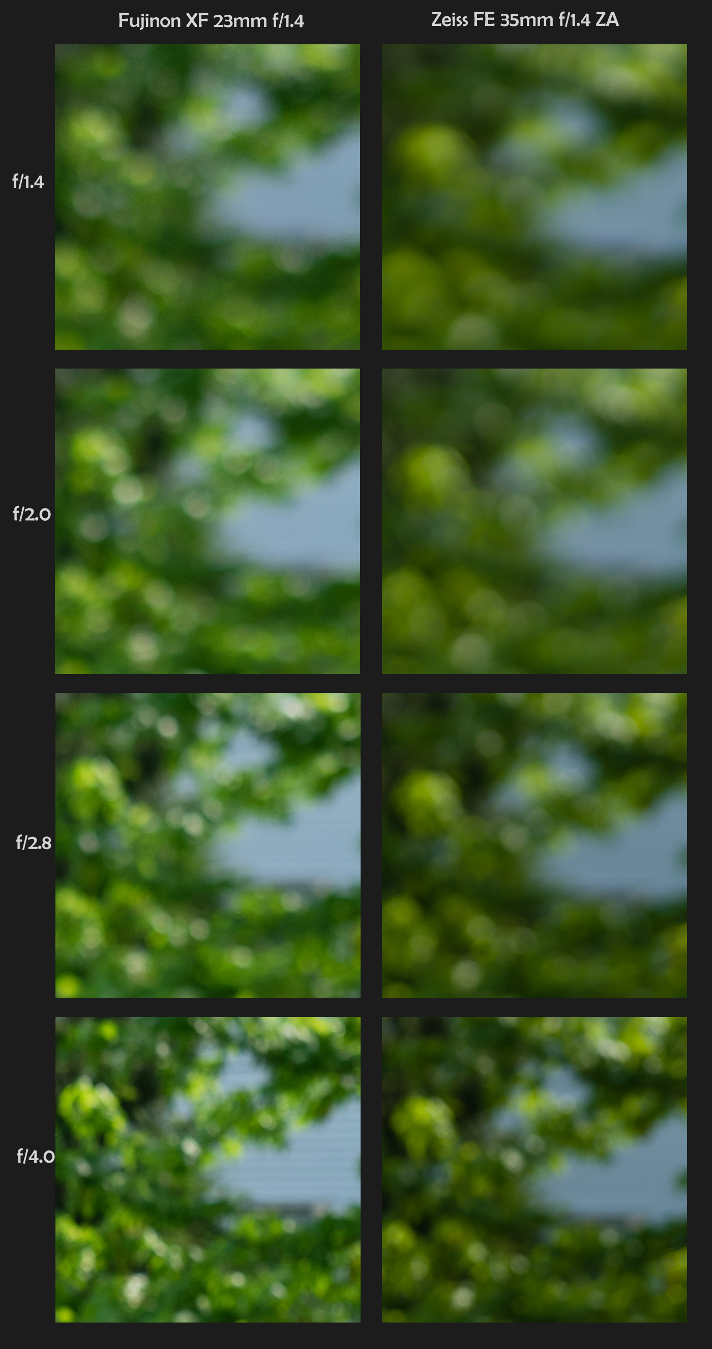 100% Crops - Bokeh (Sony resized to 16MP) - Click to view full size