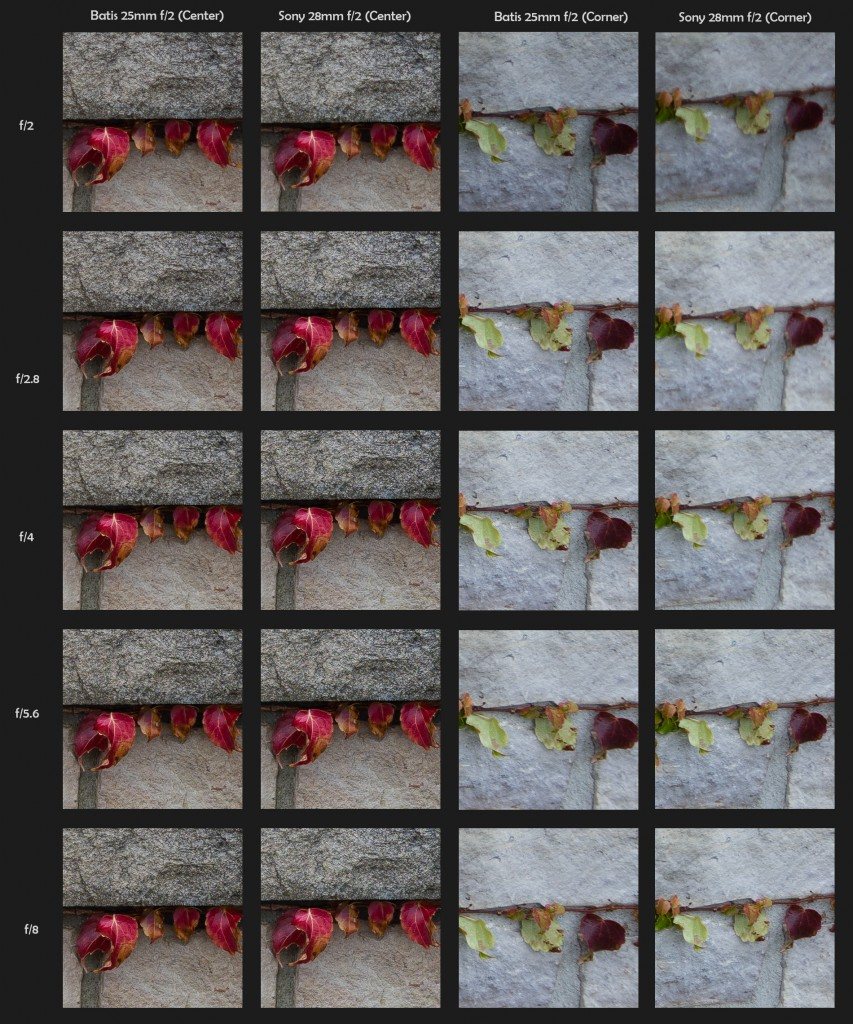 100% Crops - Batis 25mm vs. Sony 28mm - Click to Open Full Size