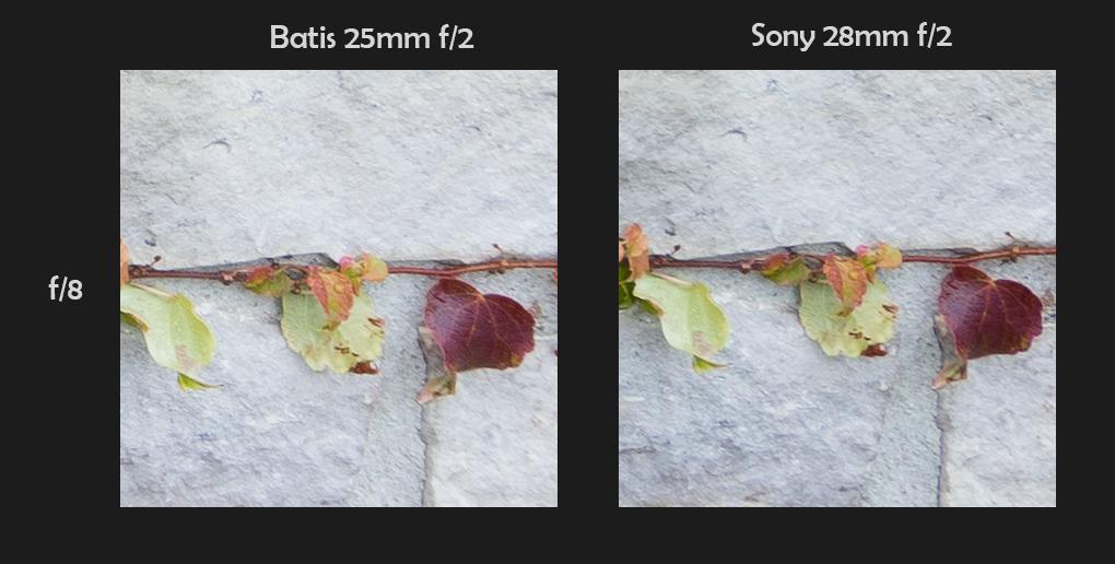 100% Corner Crops - Distortion Corrected - Click to Enlarge