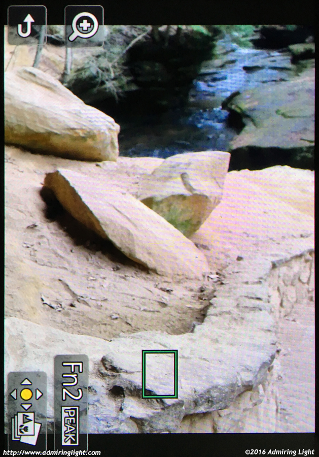 To select an image in Post Focus, you can tap anywhere in the image and the camera will allow you to export the frame that was focused there.