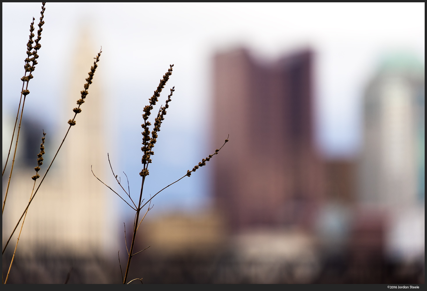 City in the Background - Sony A7 II with Sony FE 70-200mm f/4 G OSS @ 200mm, f/4