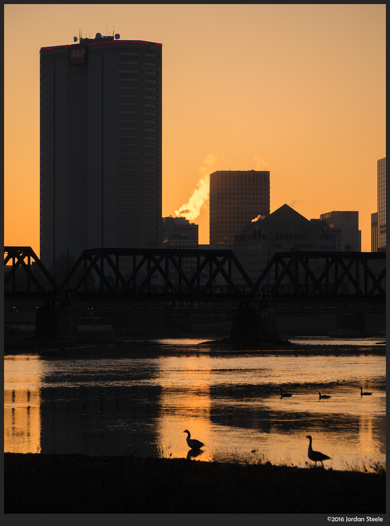 Geese in the Morning - Olympus Pen-F with Olympus 40-150mm f/4-5.6 @