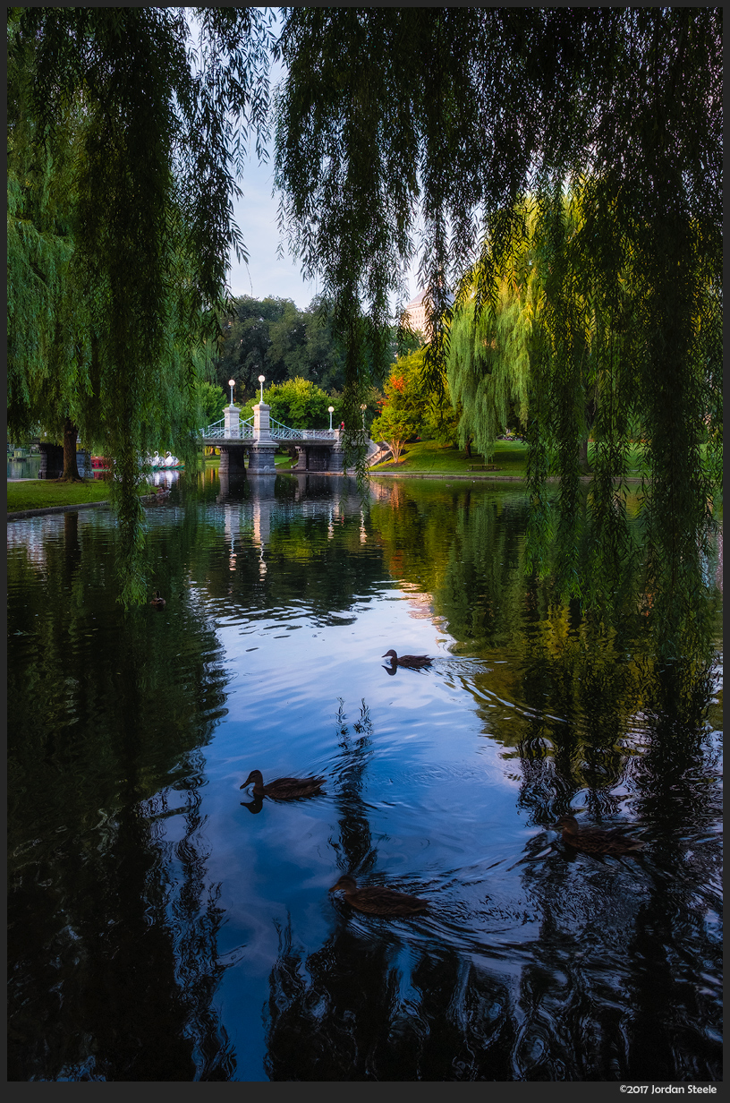 Boston Public Garden - Fujifilm X-T20 with Fujinon XF 14mm f/2.8 @